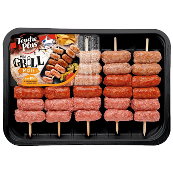 Mini grill mixte